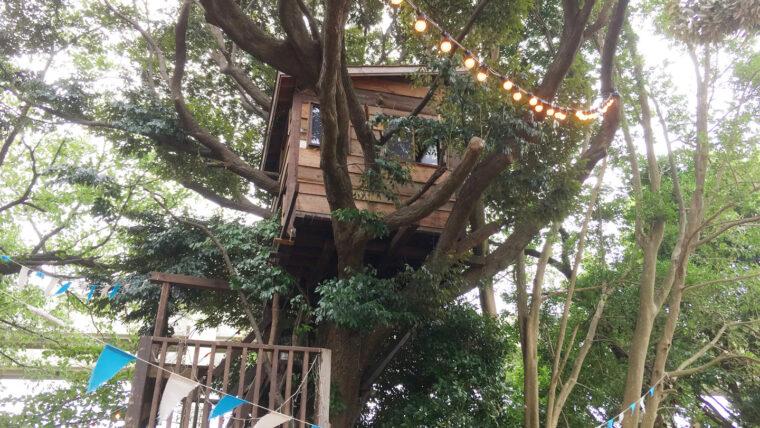 椿森コムナでキャンプ体験!テント・ツリーハウス・ハンモックのあるカフェでアウトドア好きにはたまらない癒し空間